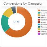 Campaign Conversions